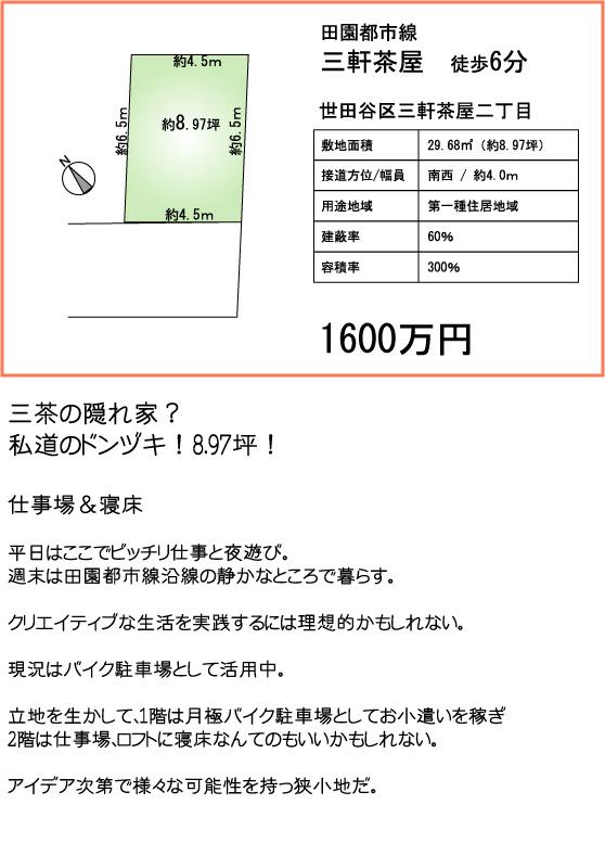 %BB%B0%C3%E3%A1%A11600%A1%A1130802.jpg
