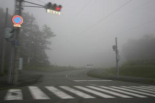 taniyama-kiri-2-web.jpg